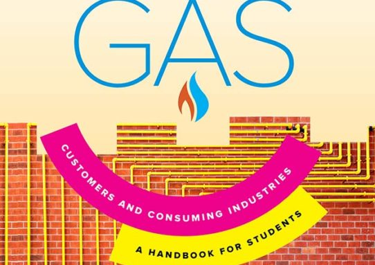 Natural Gas: Consumers and Consuming Industries
